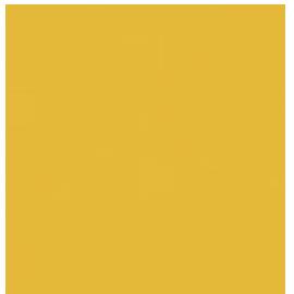 SummitLynx Logo